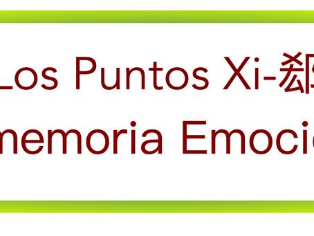 PUNTOS XI Y HUELLAS EMOCIONALES