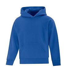 Youth Hooded Sweatshirt