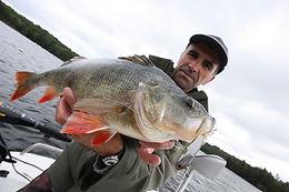 Pêche en Corrèze, Camargue et Pays Basque