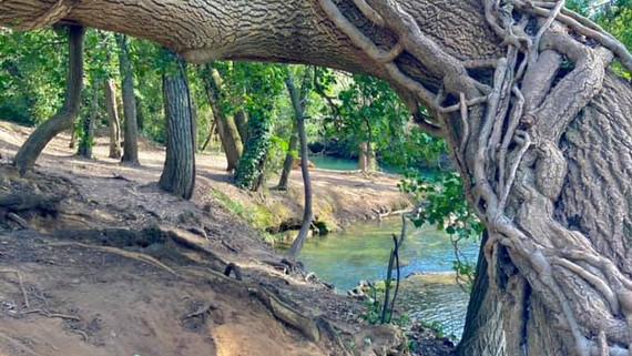 River at Sillans IV