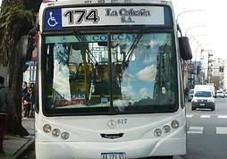 linea174.2.jpg