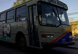 linea204a.jpg