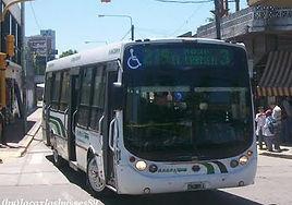 Linea219.jpg