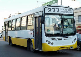 linea277.jpg