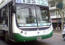 Linea135.jpg