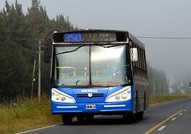 linea350.jpg