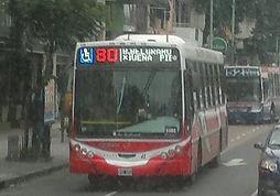 linea80.jpg