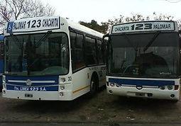 Linea123.jpg