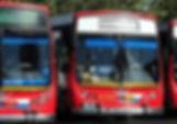 Linea273.jpg