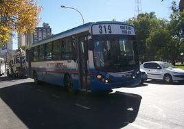 Linea319.PNG