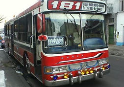 Linea181.jpg
