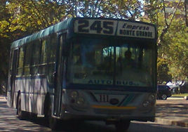 linea245.jpg