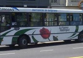 Linea65.jpg