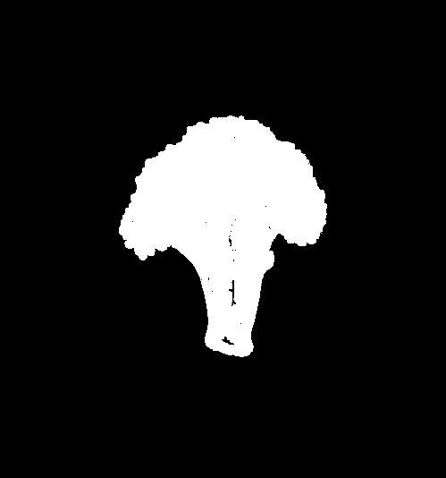 Store_square_fill@4x-Just White Broccoli