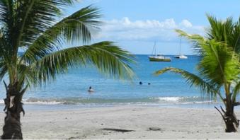 Voyage à Martinique - L'île aux fleurs