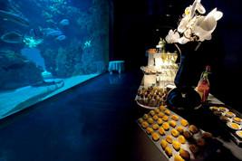 07 Aquarium cocktail 5- F.Pacorel.jpg