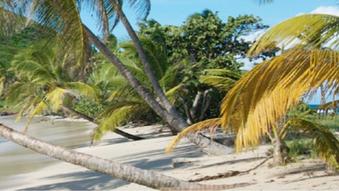 Voyage en Guadeloupe - L'archipel Couleur Arc en Ciel