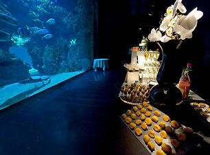 07 Aquarium cocktail 5- F.Pacorel.jpg