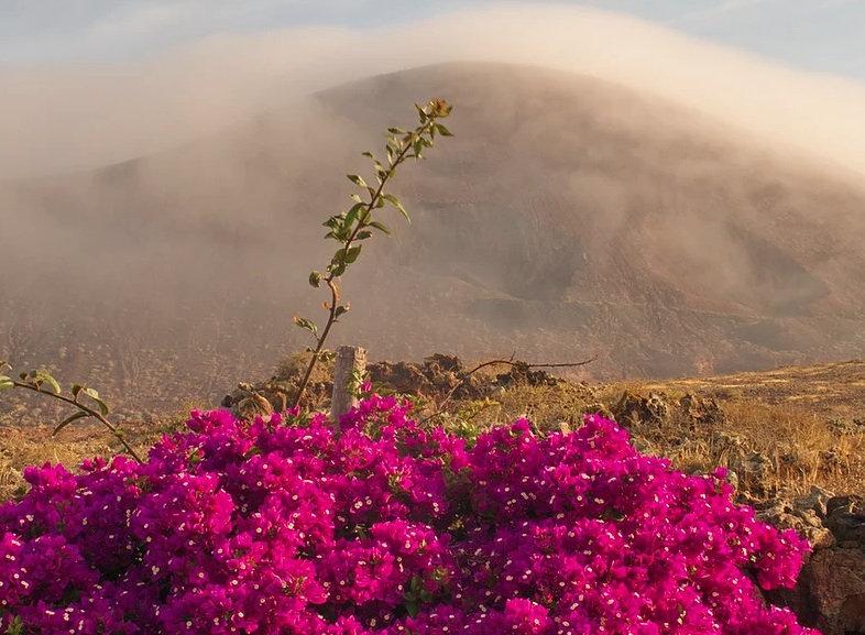 volcano pink .jpg