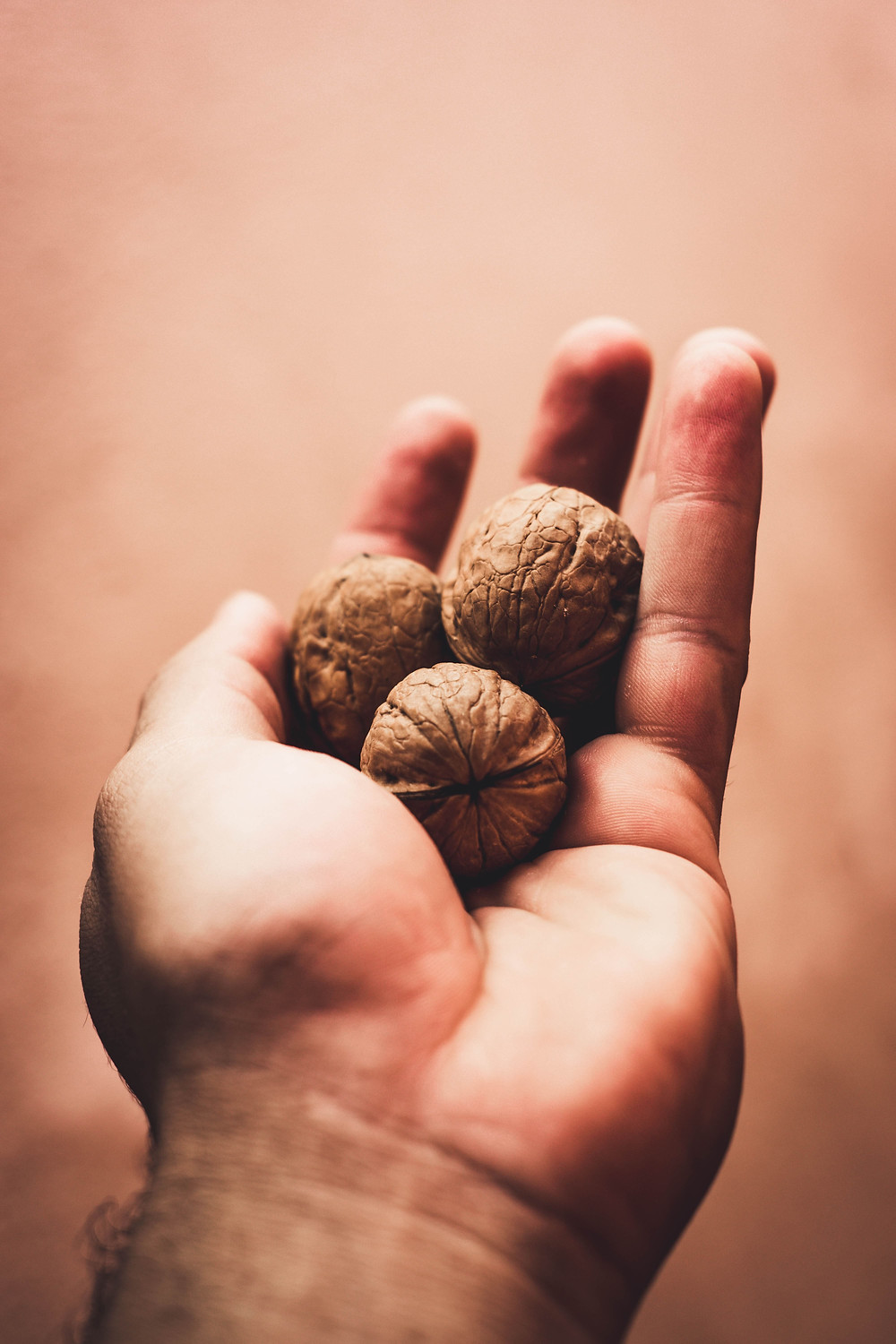 A hand holding some walnuts.