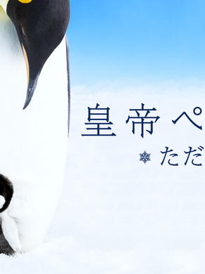 映画『皇帝ペンギン ただいま』タイアップ