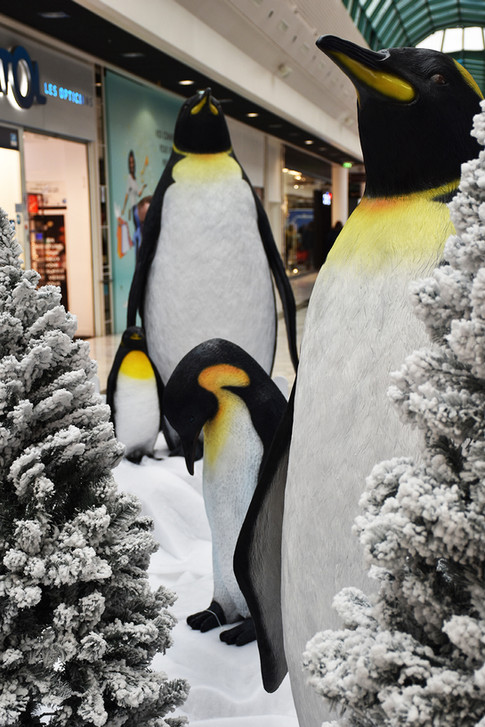Famille Pingouin