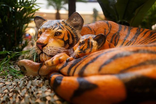 Tigresse couchée avec Tigreau