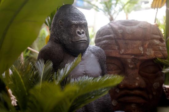 Gorille avec Statue Olmec