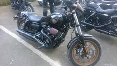 Copperheads 49.JPG