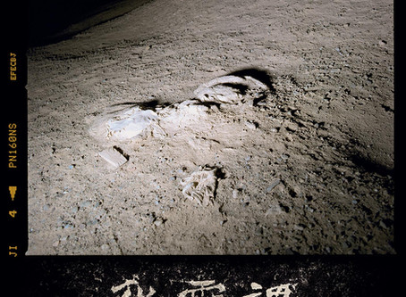 """Defeating the Notion of a Coherent Path to Mastery: Wang Bing's """"Dead Souls"""""""
