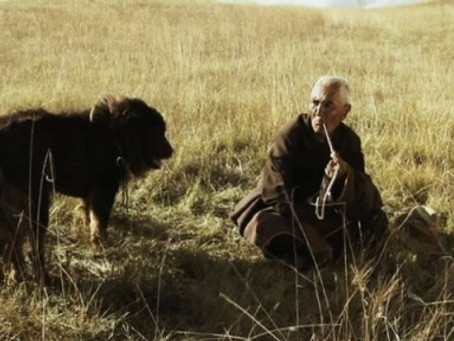 """Old Dog"" to Join Films from China and Hong Kong at San Francisco International Film Fes"
