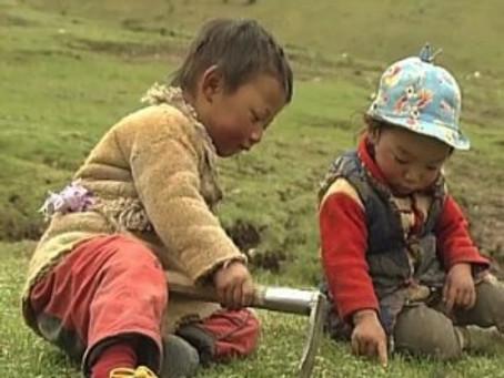 Two Week Tibetan Film Series Starts Today at MoMA