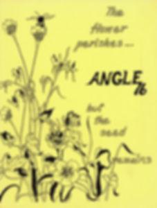 theangle.jpg