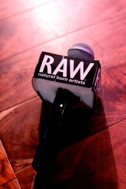 RAW microphone close up