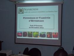 Pépinières et variétés d'hivernage
