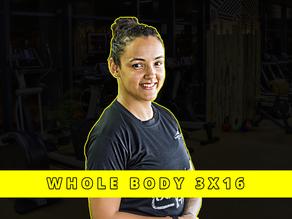 Whole body 3x16