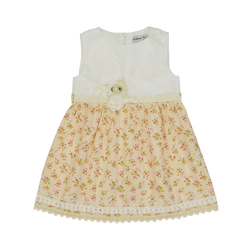 Embellish Vanilla Dress