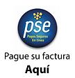 PAGOS POR PSE