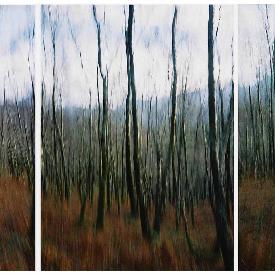 Islaw yr Dref triptych