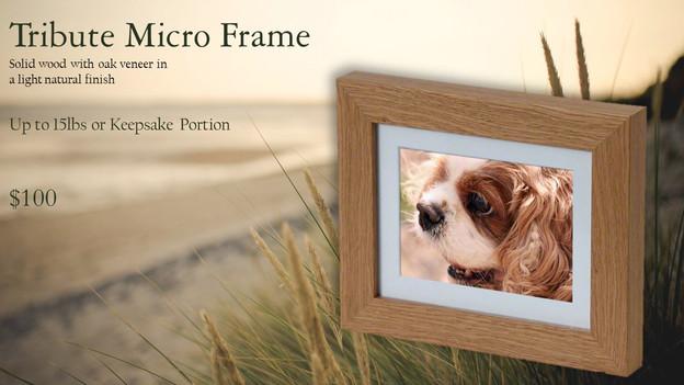 tribute frame.jpg