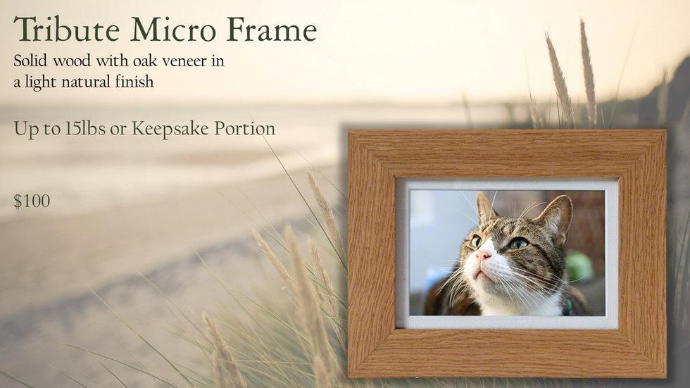micro frame.jpg