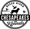 Beech River1611988881.jpg