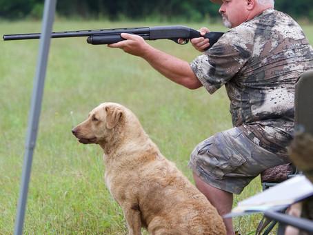 Hunt test