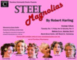 Steel Magnolias poster.jpeg