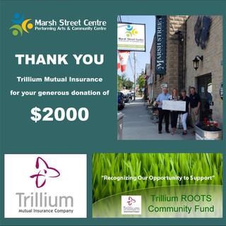 MS Trillium post (1).jpg