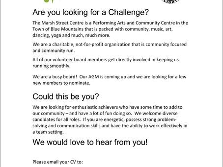 Looking for Volunteer Directors