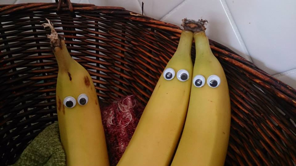 Googley eyed bananas