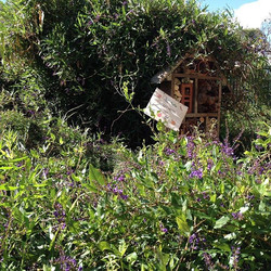 There's lots of little things to find and explore at the HEC like this charming little insect hotel