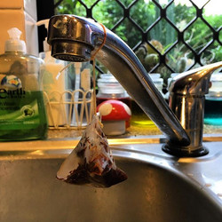 Chelsea hates it when I leave old teabags sitting on the sink. This morning I remembered and made a
