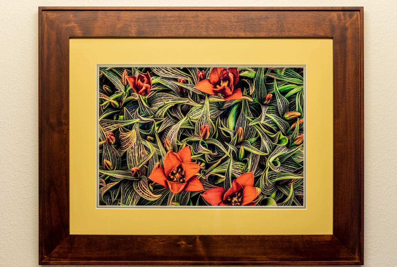 Variegated - Framed & Double Mat